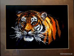 Вышивка - Тигр