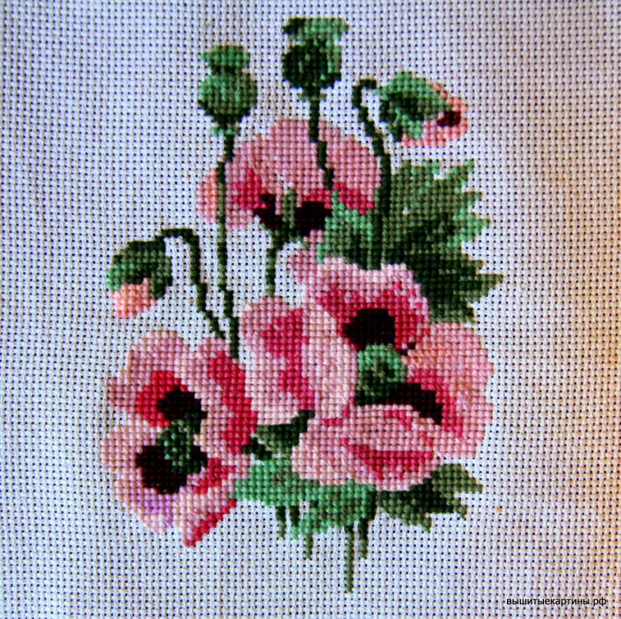 Вышивка - Розовые маки