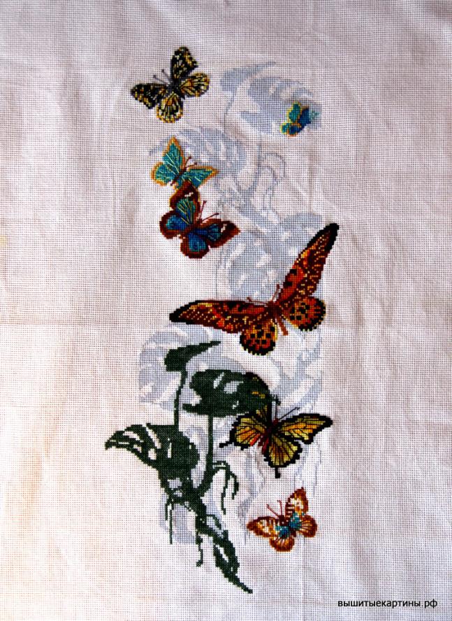 Вышивка - Бабочки